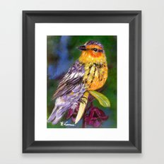 Bird Painting  - Warbler and Blossoms Framed Art Print