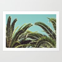 palms Art Prints featuring Palms by Lawson Images