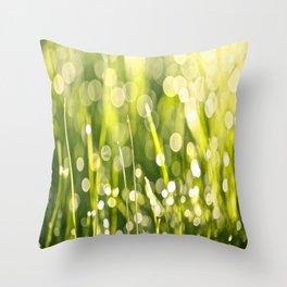 One Summer Morning Throw Pillow