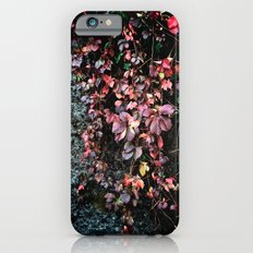 Red Leaf Slim Case iPhone 6s