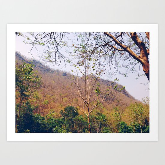 Sultry Summer Mountain Art Print