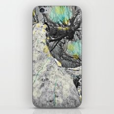 Still looking for the sun iPhone & iPod Skin