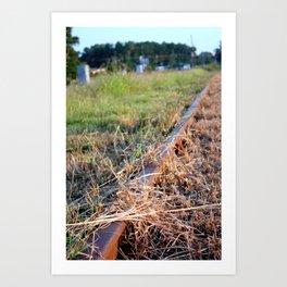 Covered Rail Art Print