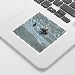 Sea Otter Fellow Sticker