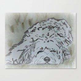 Tibetan Terrier - Contentment  Canvas Print