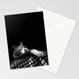 Thats My Cat 04 !! Just Bored Stationery Cards
