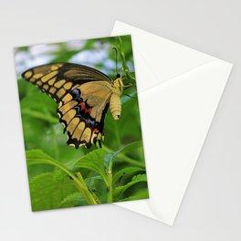 Merciless Merriment Stationery Cards