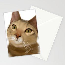 Joey Kitten Stationery Cards