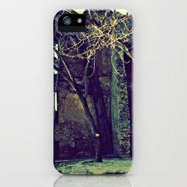 Old garden keeps secrets iPhone Case