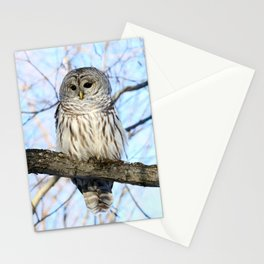 Without Scorn Stationery Cards
