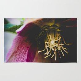 A winter flower Rug