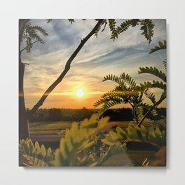 Sunrise through the trees Metal Print