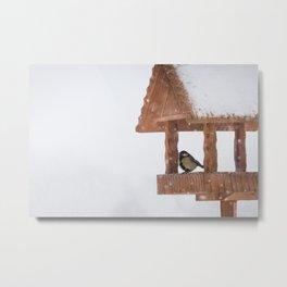 Parus Major bird Metal Print