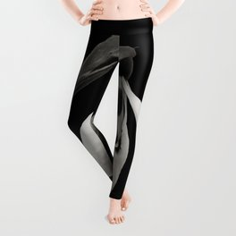 Snowdrop blossoms floral black and white photography / photograph Leggings