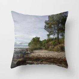Scenic Coastline Throw Pillow
