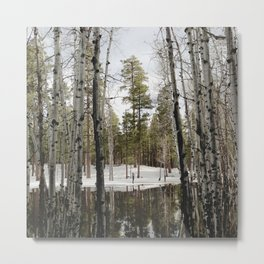 Snowy Forest Grammer Metal Print