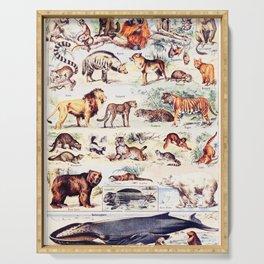 Vintage Antique Wildlife Encyclopedia Print Serving Tray