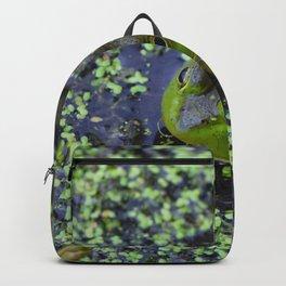 Frog blending in Backpack