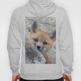 Watercolor Fox, Red Fox 28, Union Reservoir, Boulder Hoody