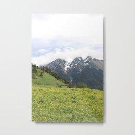 Homeland Metal Print