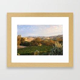 Paso Robles Hills Framed Art Print