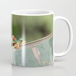 Red eye Frog on leaf Costa Rica Photography Coffee Mug
