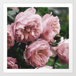 Pale pink Rose Sandi Art Print