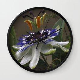 Close Up of Beautiful Passiflora Flower Wall Clock