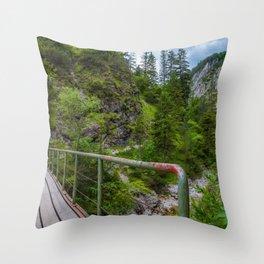 Alpine gorge Throw Pillow