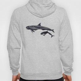 Pygmy killer whale Hoody