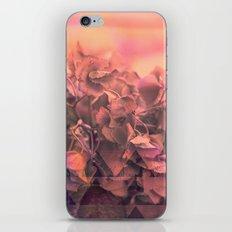 Geo nature iPhone & iPod Skin