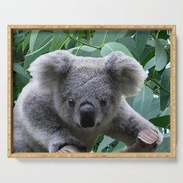 Koala and Eucalyptus Serving Tray