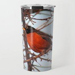 Winter Sunset Robin (1) Travel Mug
