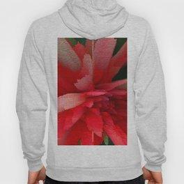 Brigth Red Flower Hoody