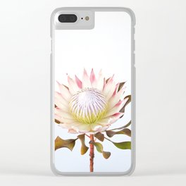 King Protea Clear iPhone Case