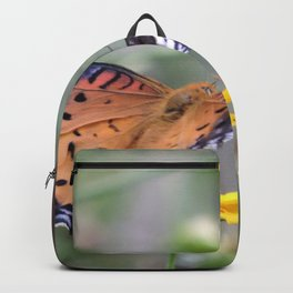 Indian Fritillary in Hangzhou Backpack