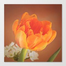 Romantic Flower Tulip Canvas Print