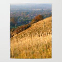 Grassy hillside Poster