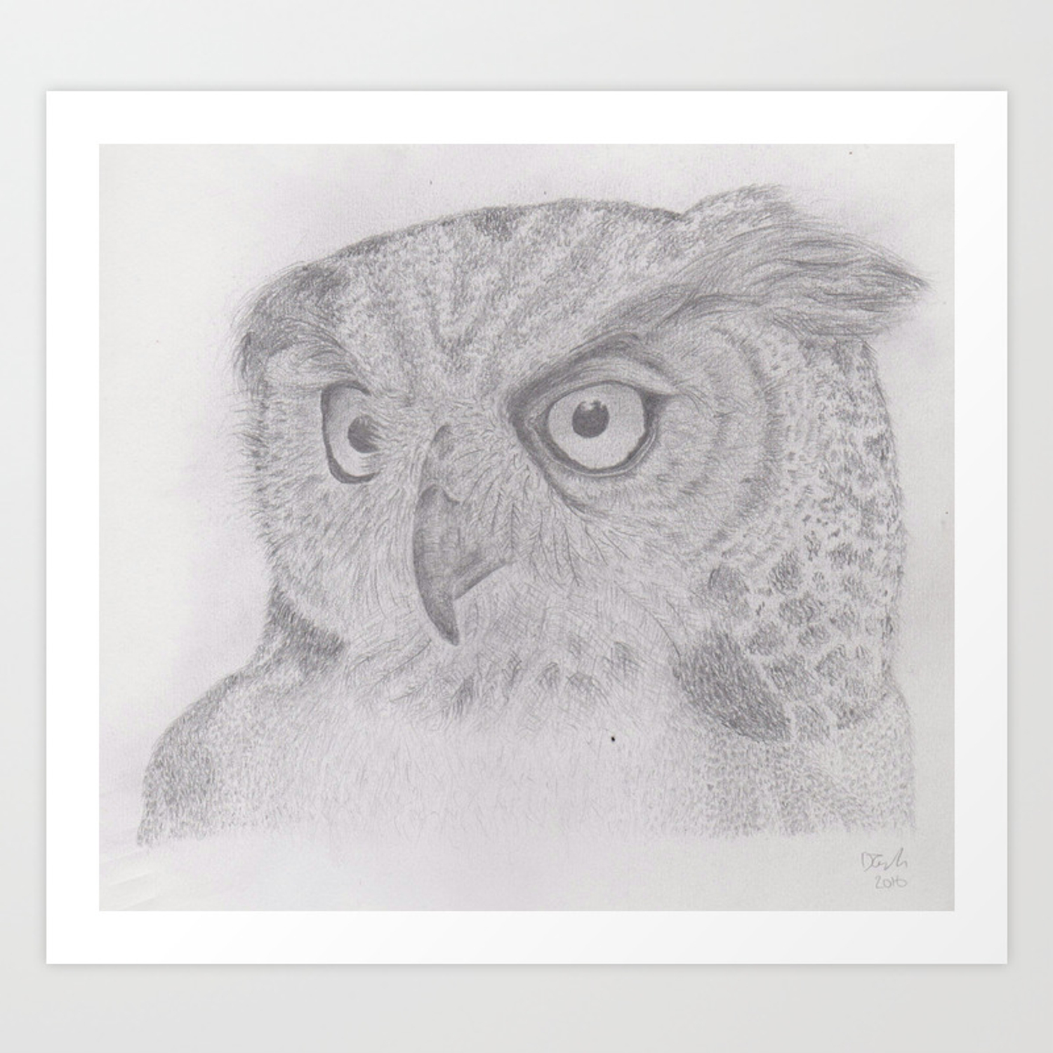 Owl pencil drawing art print