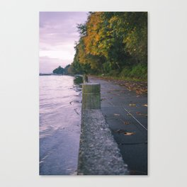 Puget sound autumn Canvas Print