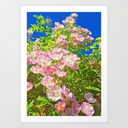 Sun Soaked Roses Art Print