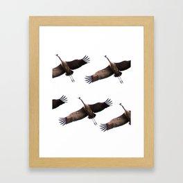 Cranes in flight #decor #society6 Framed Art Print