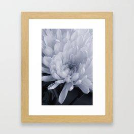 Mum Macro Framed Art Print