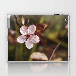 Beauty In Solitude Laptop & iPad Skin