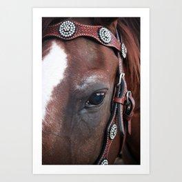 Eye of the Horse Art Print