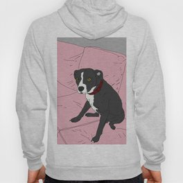 Heavy Duty Dog Hoody