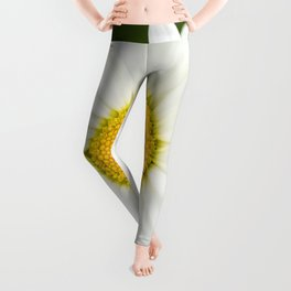Beautiful Daisy Natural Green Background #decor #society6 #buyart Leggings