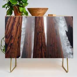 Woodley Forest Credenza