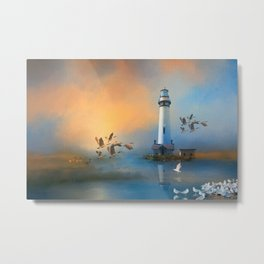Ducks Geese And Gulls Metal Print