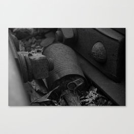Lost Travels Canvas Print